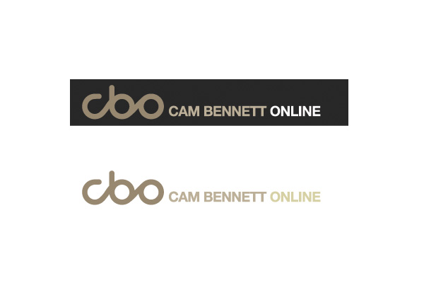 Design concepts/branding, Wolf CMS development for cambennettonline