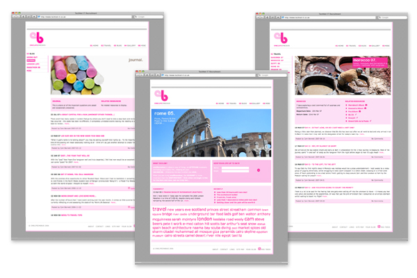 Design concepts/branding, front end development for onelifeonebus